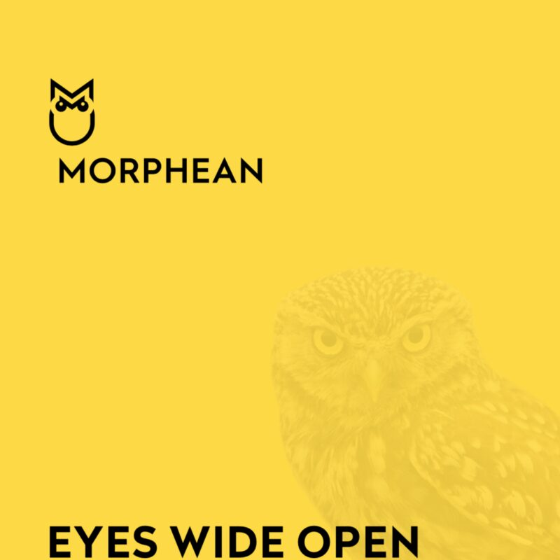 Download Morphean - General Brochure